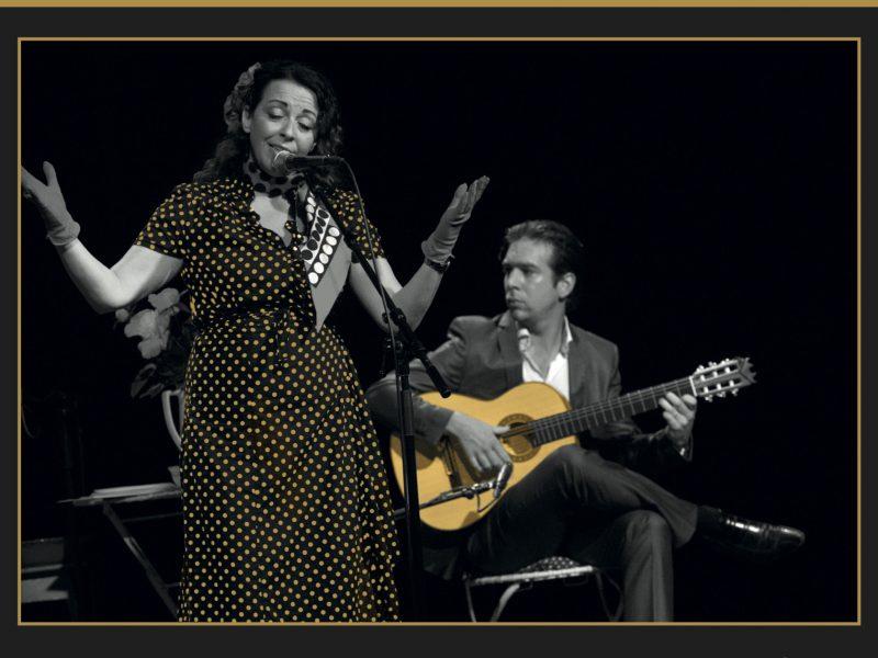 't SPEELTUYGH gitaarspecialisten presenteert: Flor-de-Lis